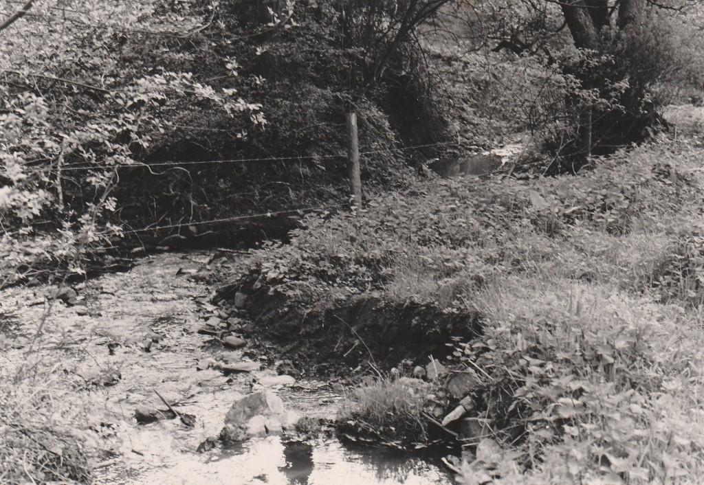 Le Ruisseau Fasol, waarnaar de wijde omgeving is genoemd.